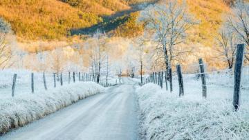 Zimski pejzaži-Winter landscapes - Page 21 Thumb10