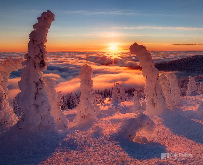 Zimski pejzaži-Winter landscapes - Page 15 Tree-h10