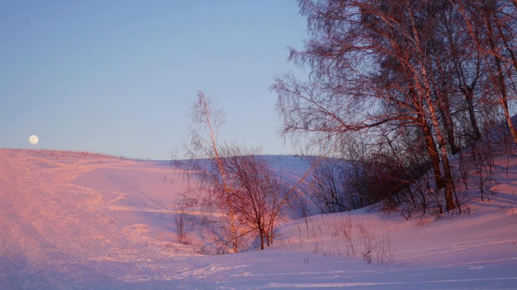 Zimski pejzaži-Winter landscapes - Page 4 Videob11