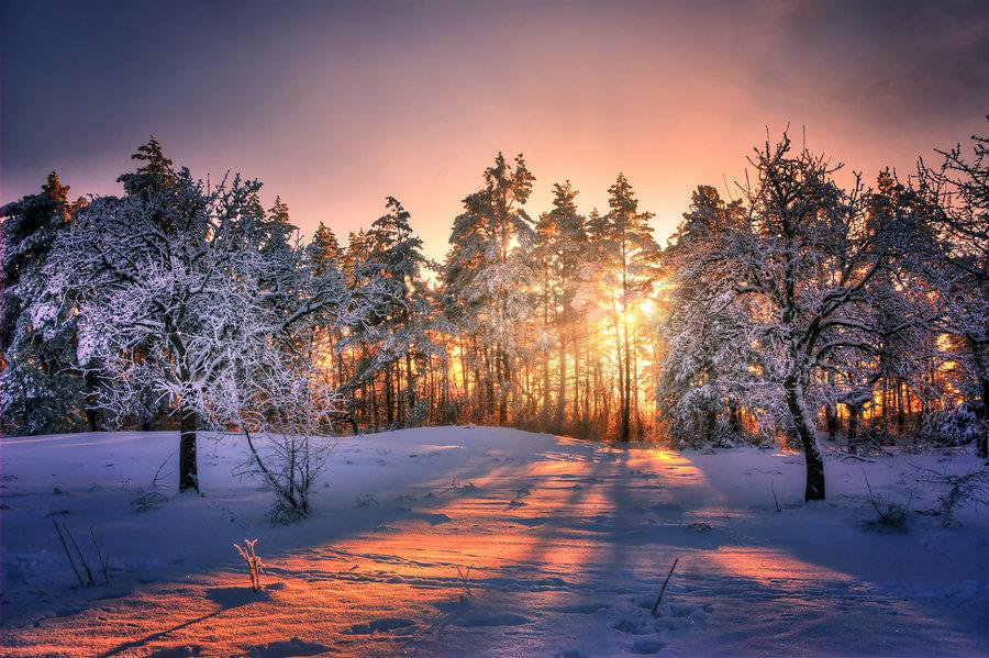 Zimski pejzaži-Winter landscapes - Page 4 Winte146