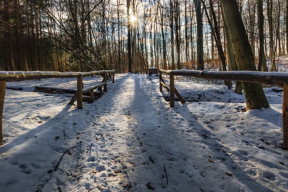Zimski pejzaži-Winter landscapes - Page 13 Winte166