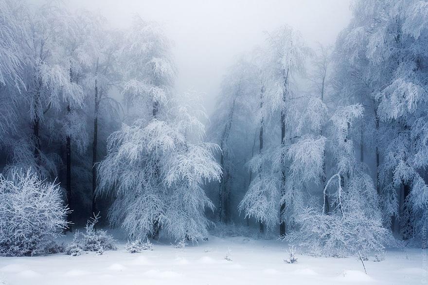 Zimski pejzaži-Winter landscapes - Page 13 Winte167