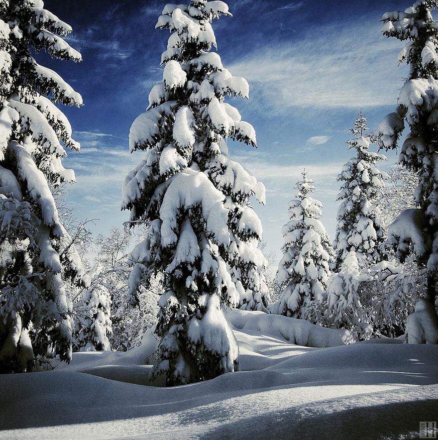 Zimski pejzaži-Winter landscapes - Page 13 Winte170