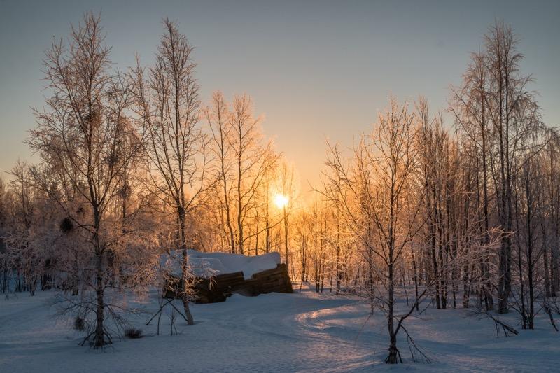 Zimski pejzaži-Winter landscapes - Page 15 Winte177