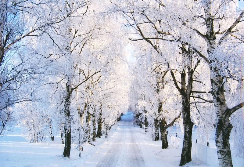 Zimski pejzaži-Winter landscapes - Page 15 Winte182