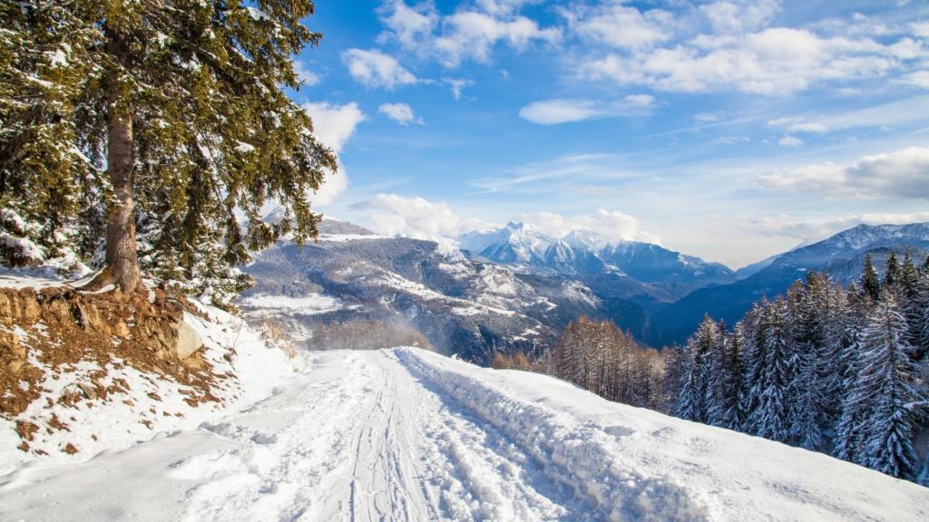 Zimski pejzaži-Winter landscapes - Page 15 Winte183