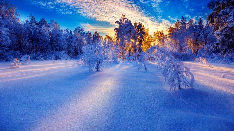 Zimski pejzaži-Winter landscapes - Page 21 Winte193