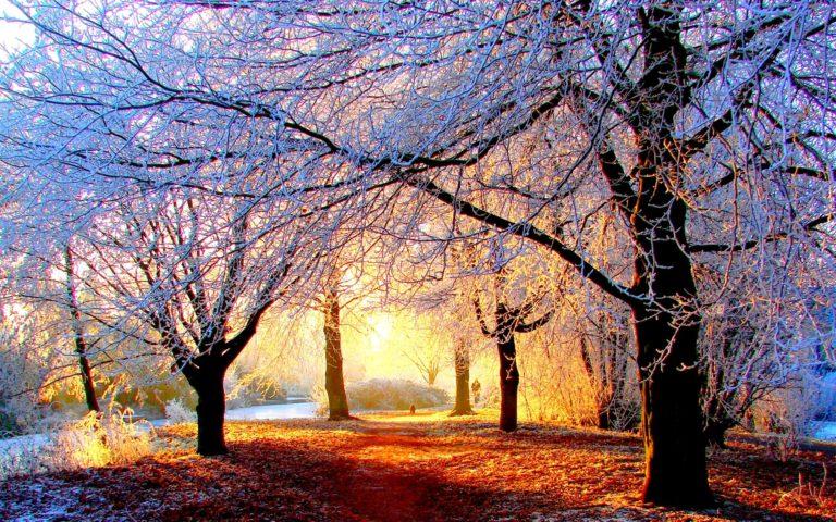 Zimski pejzaži-Winter landscapes - Page 21 Winte194
