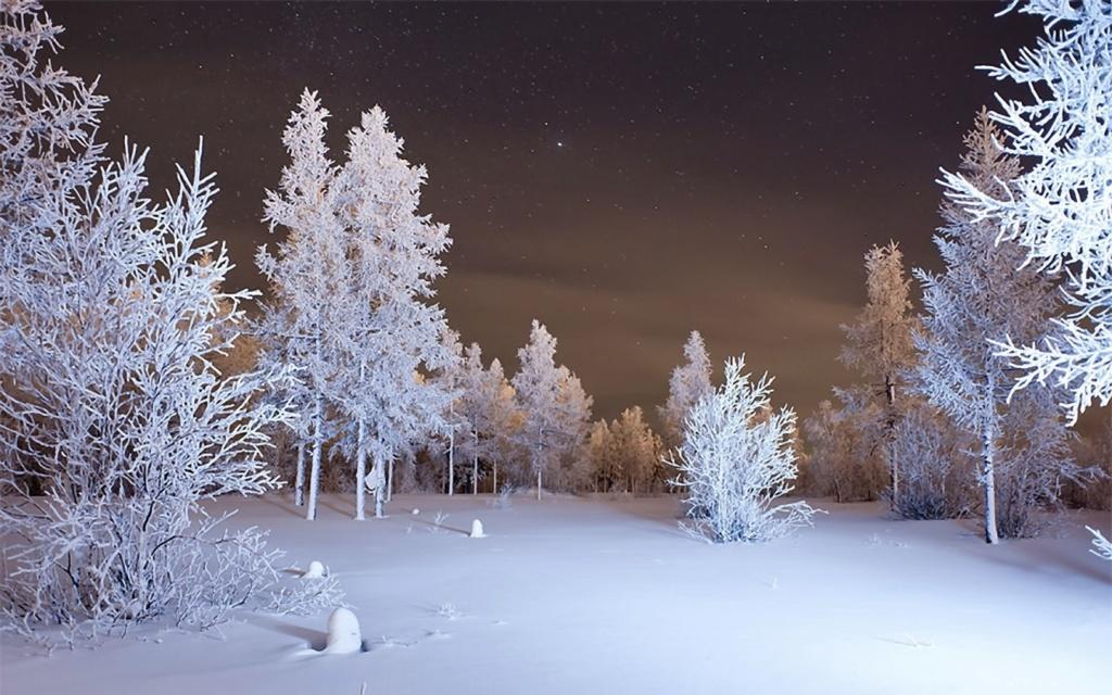 Zimski pejzaži-Winter landscapes - Page 22 Winte201