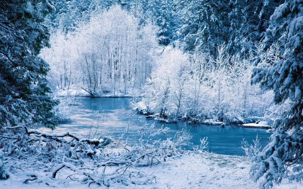 Zimski pejzaži-Winter landscapes - Page 22 Winte202