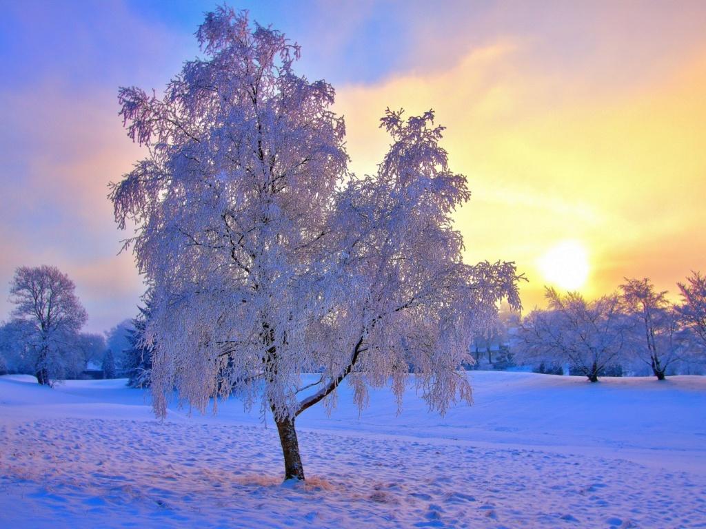 Zimski pejzaži-Winter landscapes - Page 22 Winte204