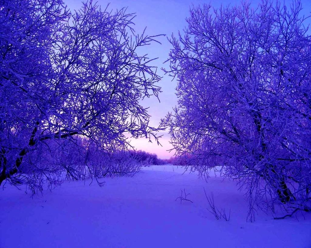 Zimski pejzaži-Winter landscapes - Page 22 Winte207