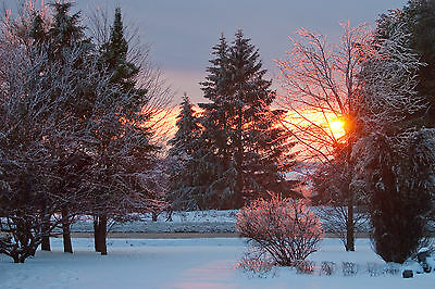Zimski pejzaži-Winter landscapes - Page 24 Winte219