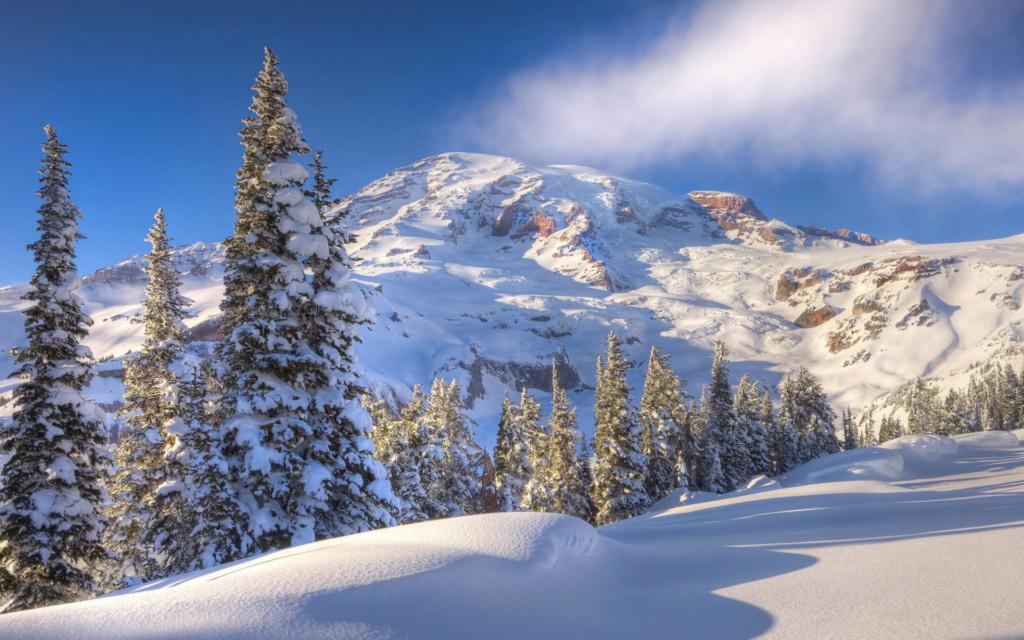 Zimski pejzaži-Winter landscapes - Page 24 Winte220