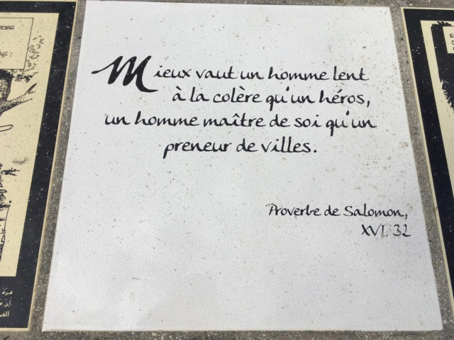 proverbes et petites phrases - Page 22 Img_3714