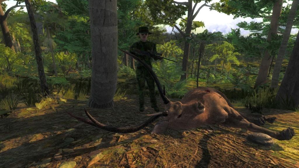 TOP 5 Sambar Deer // Ciervo Sambar 6e428c10