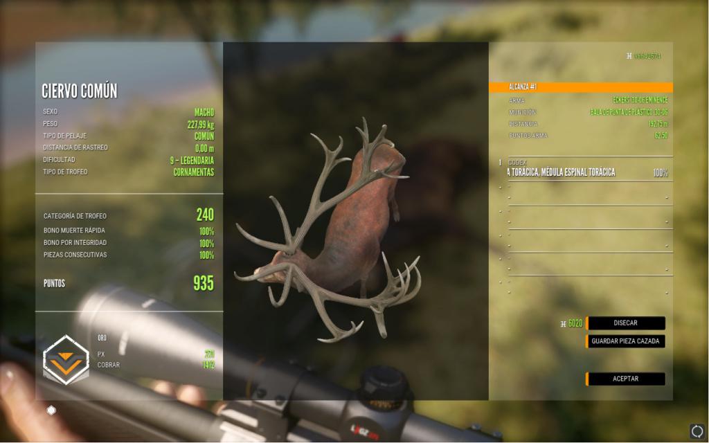 Trol cazado en Cuatro colinas Ciervo10