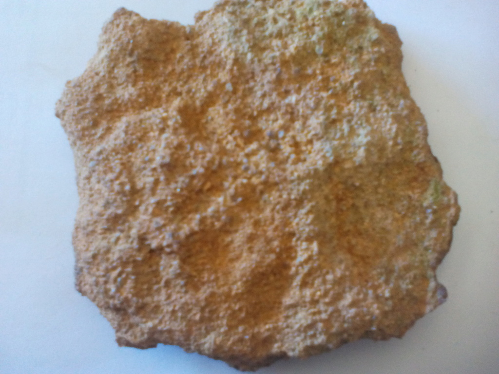 Madera fósil? Img_2024