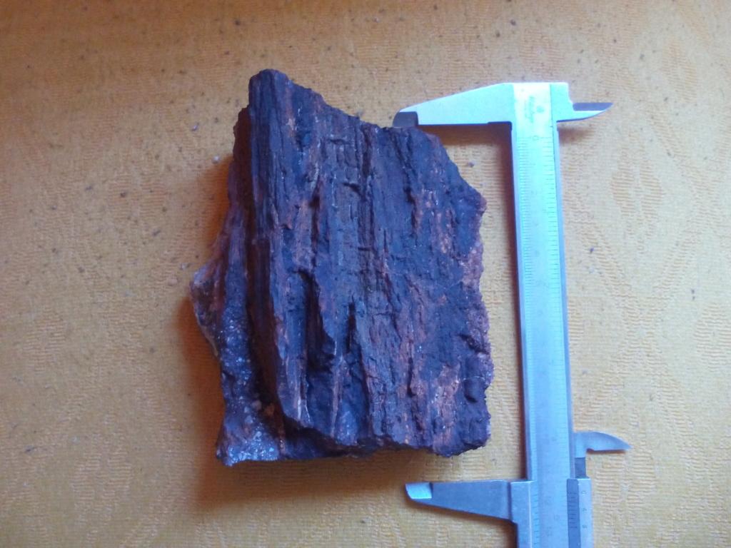 Madera fósil? Img_2025