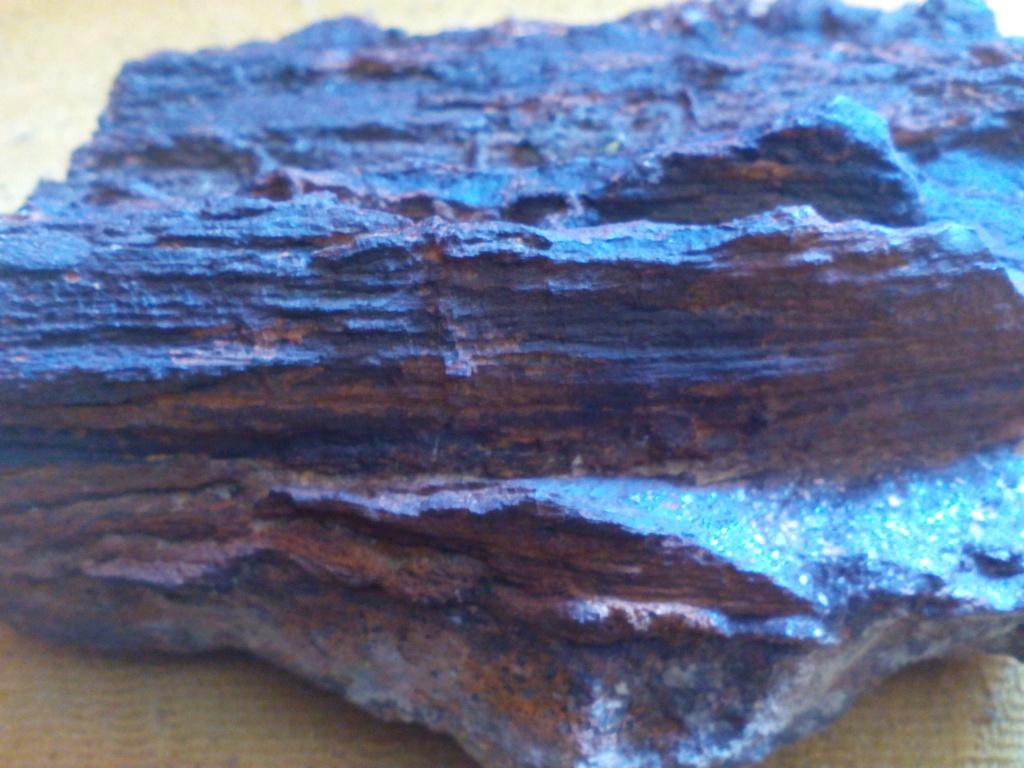 Madera fósil? Img_2026