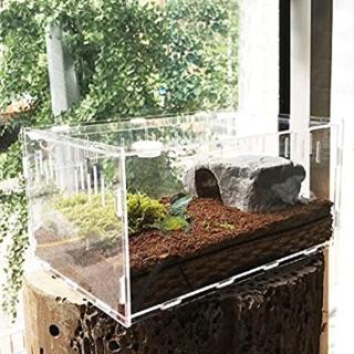 Les terrariums en acrylique  51vlgu10