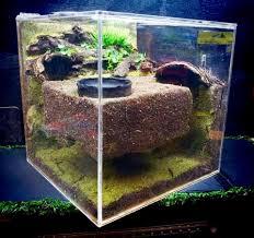 Les terrariums en acrylique  Images10