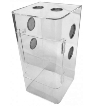 Les terrariums en acrylique  Tarant10