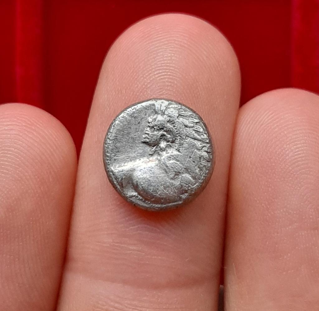 Didracma de Cardia, Quersoneso Tracio. 350 a.C. Prótome de león 20210610