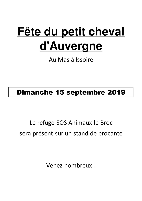 Fête du petit cheval d'Auvergne  Image_14