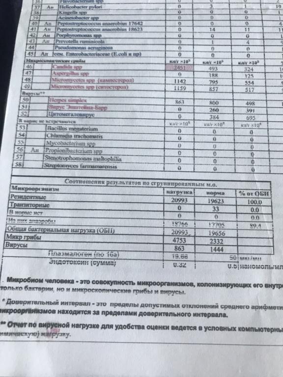 Ярославчик 1.7 96666210