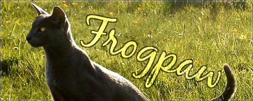 Wack-a-Mole [FAMILY SEARCH] Frog_210