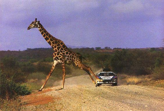Les insolites du sport automobile. - Page 10 F9abd610