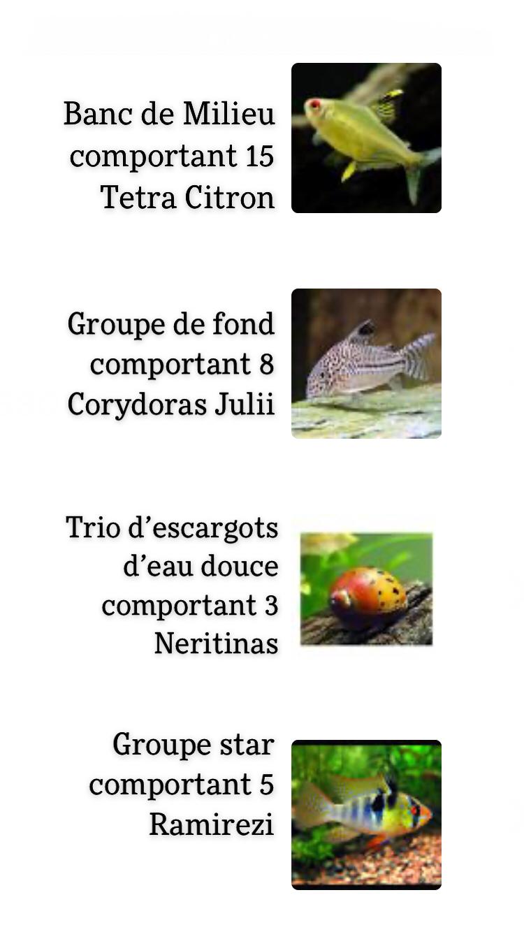 Mon 180L amazonien, évolution et questions..! - Page 2 Cf285b10