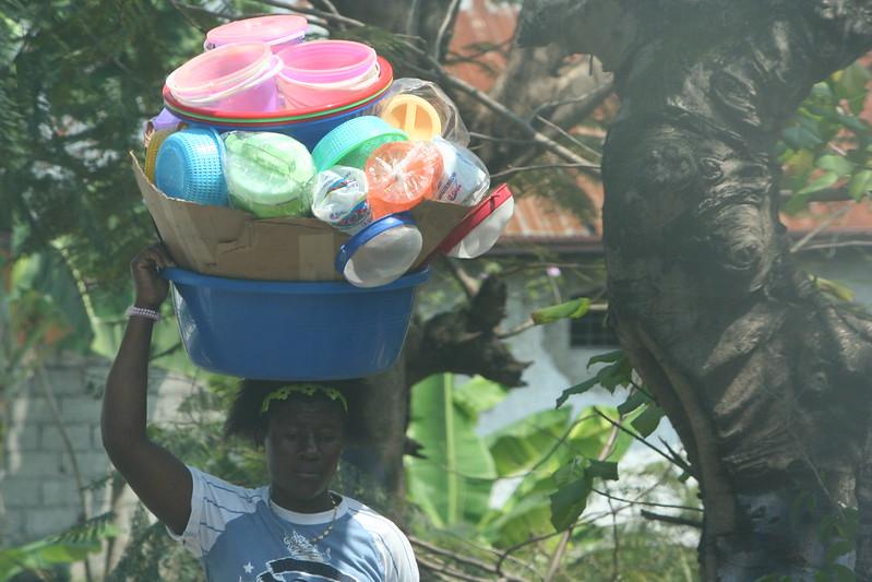 La vida en Haití  - Página 2 33736510