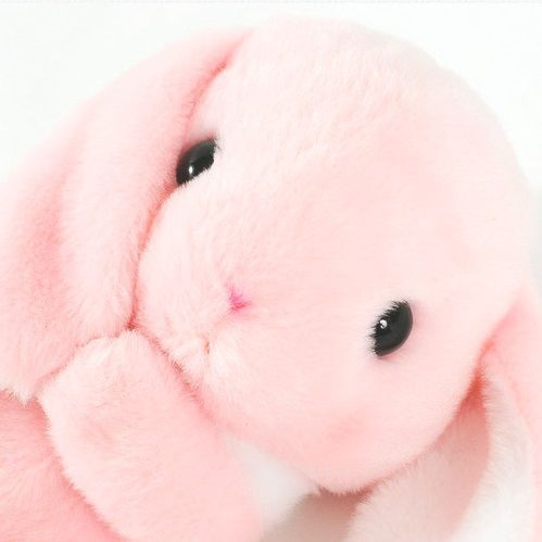 Estética rosa 38a5b810