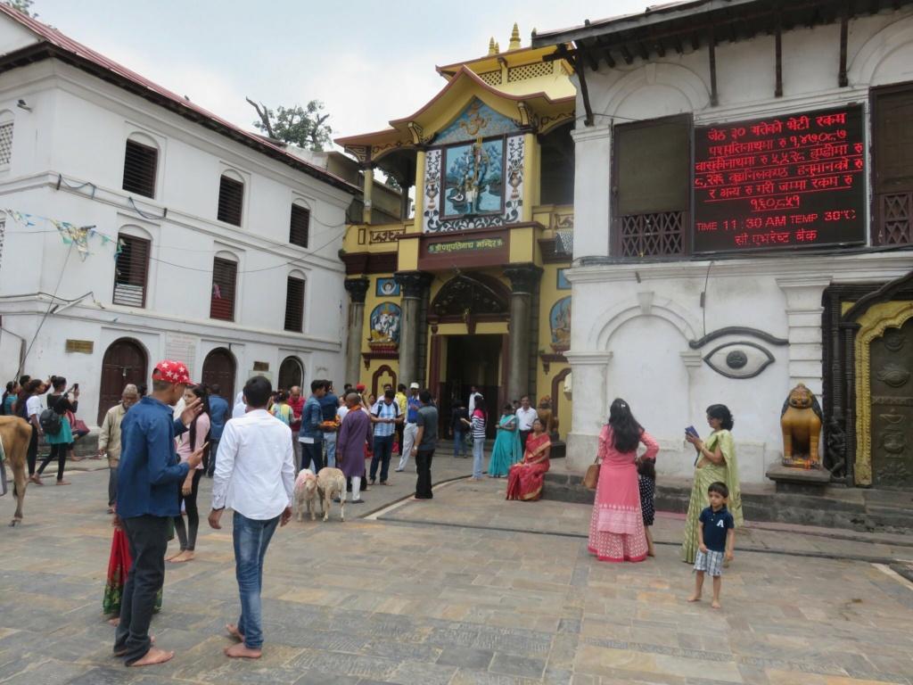 El Templo de Pashupatinath 425a4910