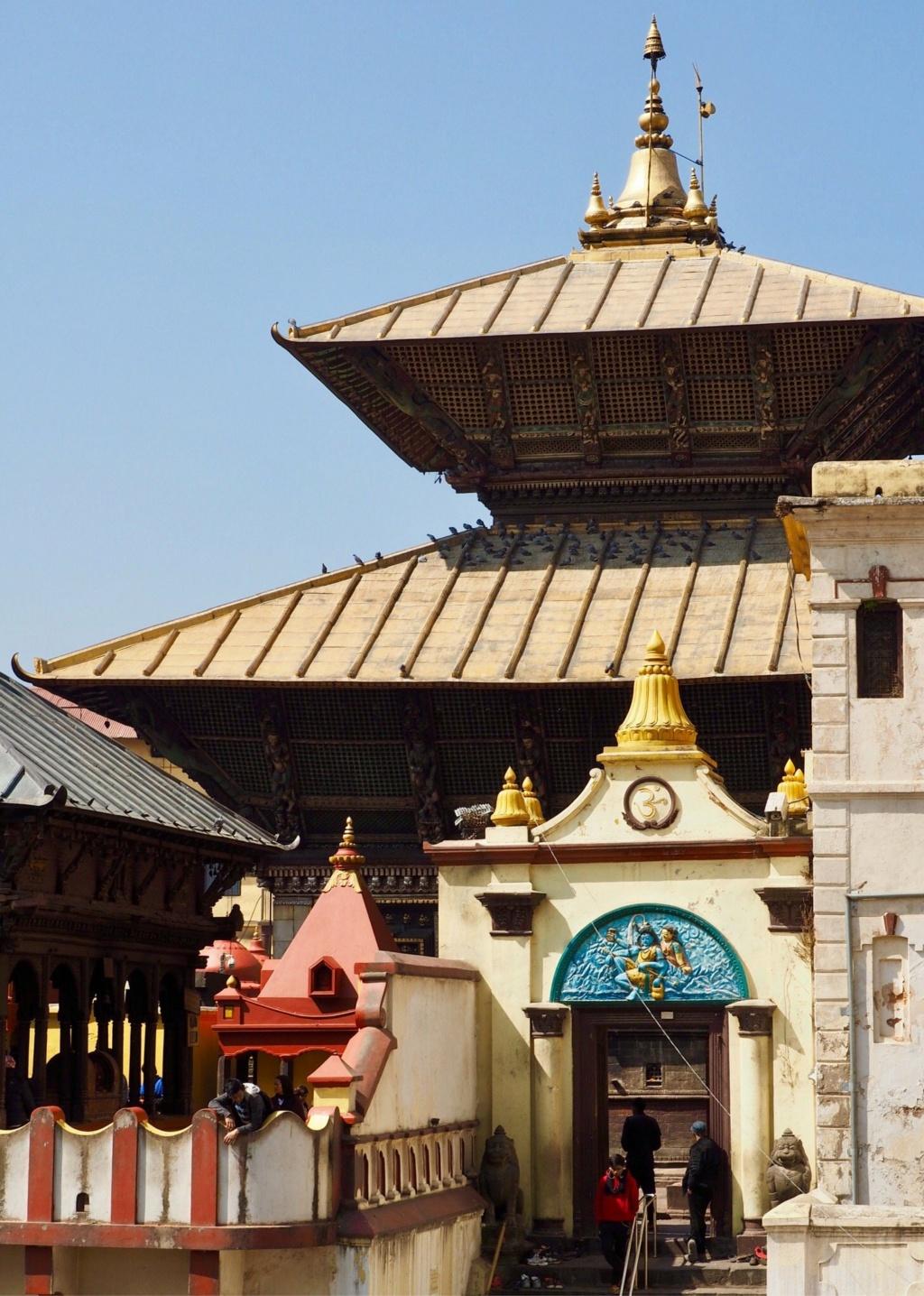 El Templo de Pashupatinath 45178f10