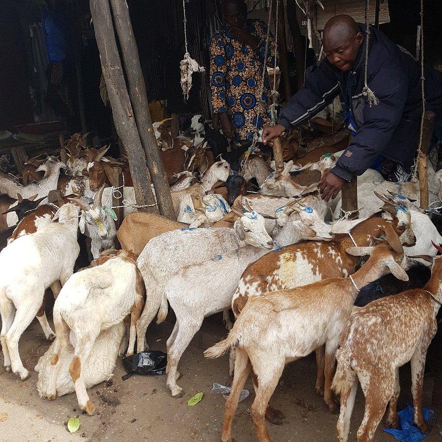 Mercado Dantokpa, el mercado más grande de África del Oeste  A9d5a310