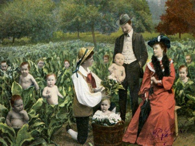 Imágenes con bebés  Lzogen10