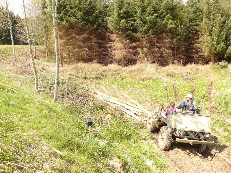 401 modifié forestier P1030910