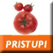 Pristupi