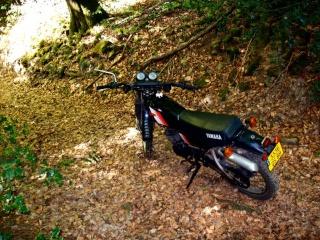 DTMX 125cc Membres / Mod. 1981 100_4010