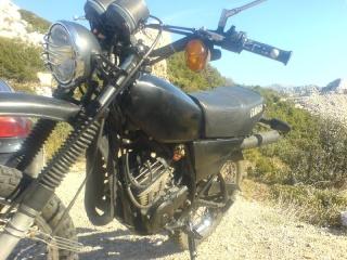 DTMX 125 cc MEMBRES : Personnalisées Dsc06810