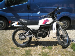 DTMX 125cc Membres / Mod. 1981 Dtmx0010