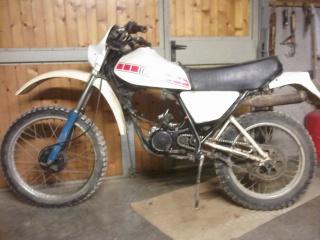 DTMX 125cc Membres / Modèles endurisés Motoj10