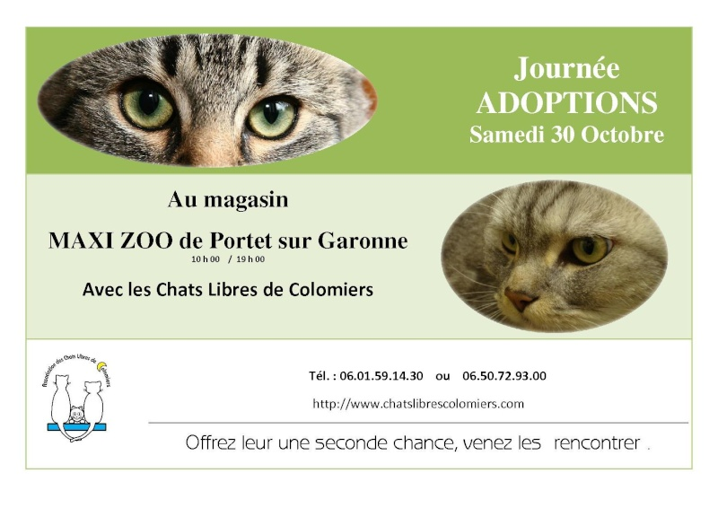 journ e adoptions maxi zoo portet samedi 30 octobre 2010. Black Bedroom Furniture Sets. Home Design Ideas