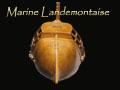 Salutations maritimes !!! Ascren11
