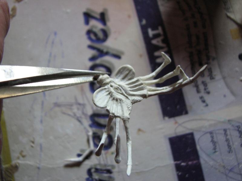 souvenir Img_0710