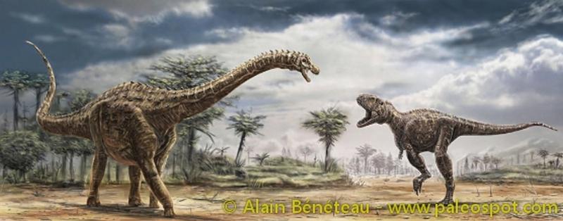 Paleontologie, l'actu... Ampelo10