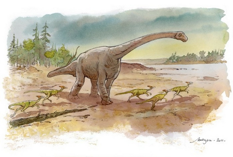 Paleontologie, l'actu... Angeac10
